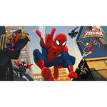 Wand-Deko Spiderman & Team