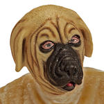 NEU Vollmaske Bullmastiff, Latex